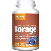 Borage GLA 240 - Olej z Ogórecznika 1200 mg (120 kaps.) Jarrow Formulas