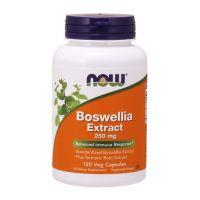 Boswellia 250 mg ekstrakt z Kurkumą (120 kaps.) NOW Foods