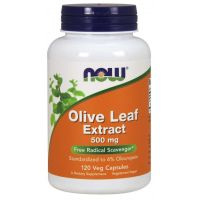 Olive Leaf extract - standaryzowany Liść Oliwny 500 mg (120 kaps.) NOW Foods