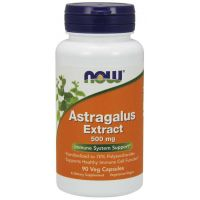 Astragalus Extract - Traganek 500 mg (90 kaps.) NOW Foods