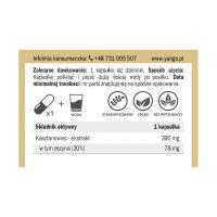 Kasztanowiec - ekstrakt standaryzowany na 20% esycyny (60 kaps.) Yango