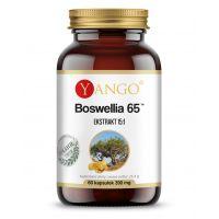 Boswellia 65 - Kadzidłowiec...