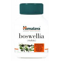Boswellia (Shallaki) - Boswellia Serrata 125 mg (60 kaps.) Himalaya