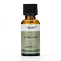 100% Olejek z igieł Jodły Syberyjskiej (Siberian Fir) - Jodła dziko rosnąca (30 ml) Tisserand