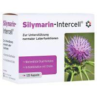 Silymarin-Intercell - Cholina + Ostropest dla wsparcia pracy wątroby (120 kaps.) Intercell Pharma