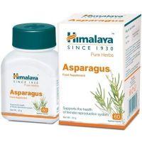 Asparagus (Shatavari) - Szparag Groniasty 250 mg (60 kaps.) Himalaya