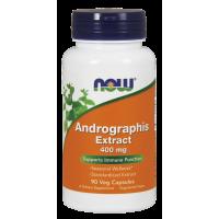 Andrographis 400 mg (90 kaps.) Now Foods