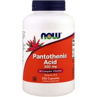Pantothenic Acid - Kwas Pantotenowy (Witamina B5) 500 mg (250 kaps.) Now Foods