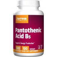 Witamina B5 - Kwas Pantotenowy 500 mg (100 kaps.) Jarrow Formulas