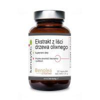 Liść Oliwny (ekstrakt z liści drzewa oliwnego) - Oleuropeiny i Polifenole (60 kaps.) KenayAG