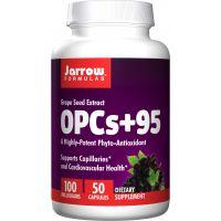 OPC 95 % - Ekstrakt z Pestek Winogron 100 mg (50 kaps.) Jarrow Formulas