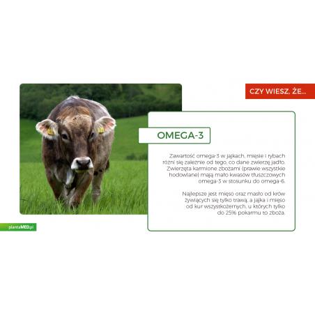 BIO Omega 3 6 9 Oil (200 ml) Viridian